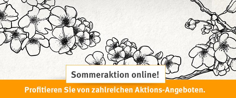 Unsere Sommeraktion! Jetzt Online